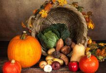 Lecznicze działanie diety warzywno-owocowej