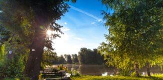Oświetlenie ogrodu i oczka wodnego